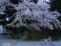 20060419_004_1