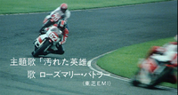 20100316_ye33