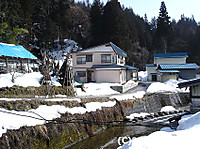 20070207_030