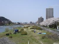 sakura_hirosegawa