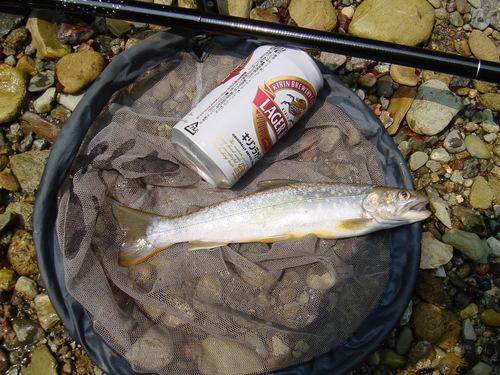 Fish&Beer
