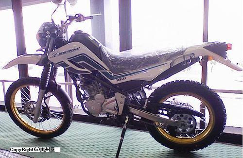 SEROW250