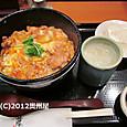 親子丼 (鳥藤分店2号店)
